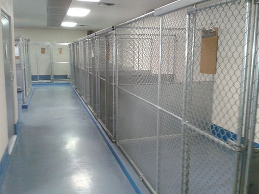 Kennel area.jpg