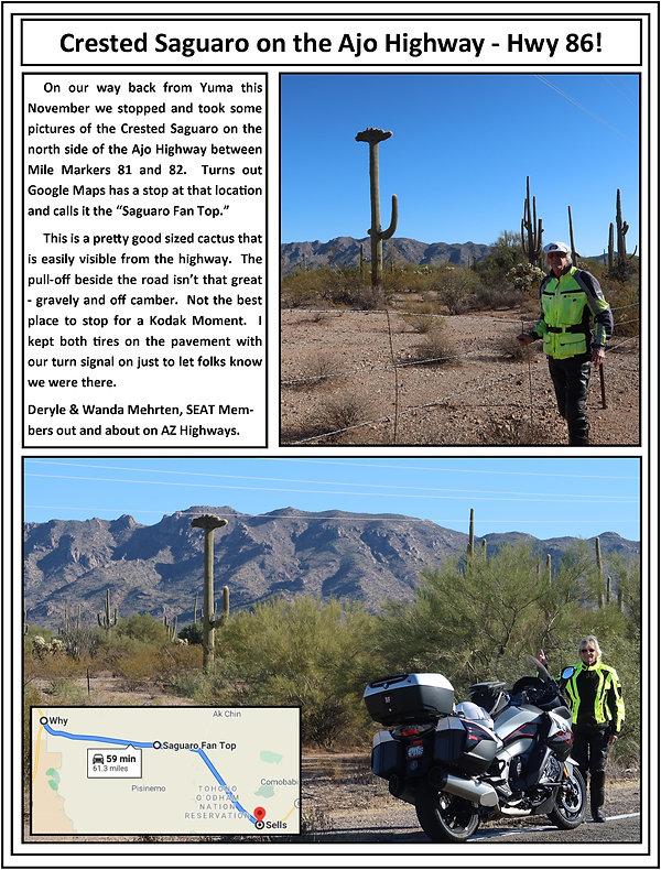 Crested Saguaro Ajo Hwy 86.jpg