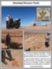 Moenkopi Dinosaur Tracks.jpg