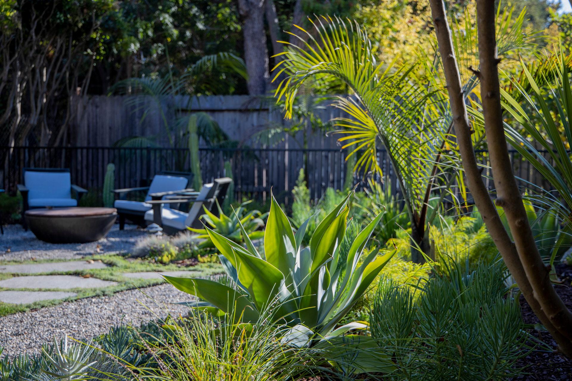 Backyard Garden Planting