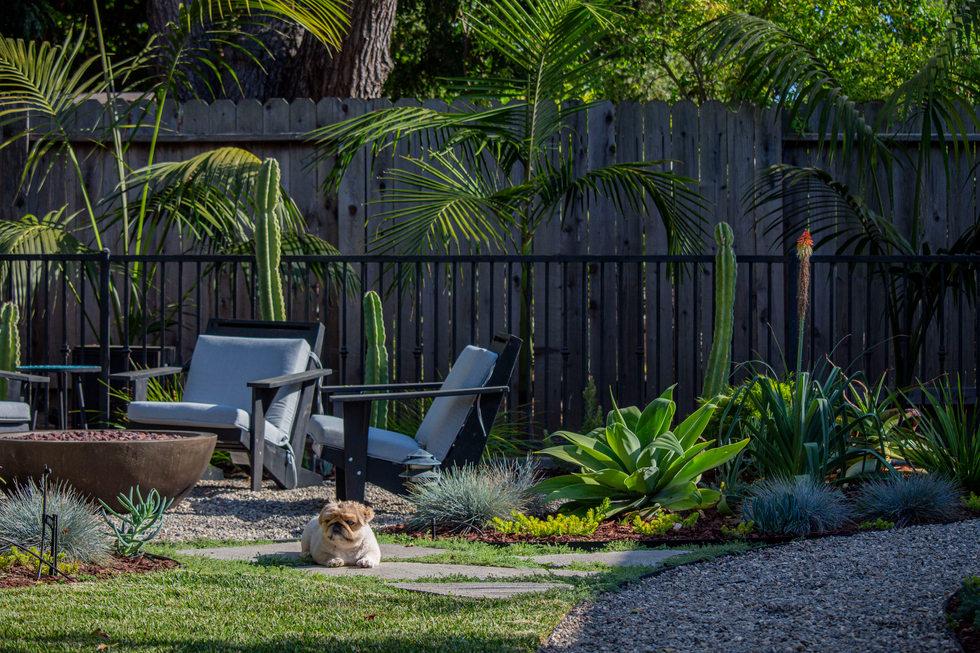 Backyard Chilling