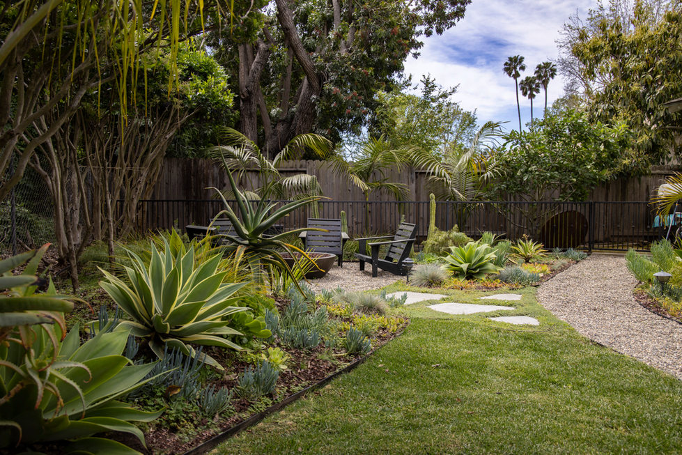 Backyard Landscape Design Succulents