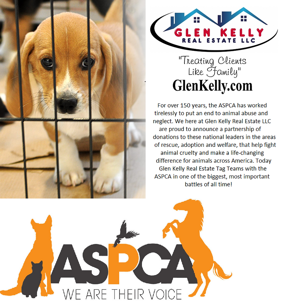 Glen Kelly, Glen Kelly Real Estate, ASPCA, Animas, Pets, Dogs, Cats, Love Animls, gleneklly.com