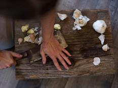 Bewildered Pig's Wild Mushroom Celebration 11/1-10