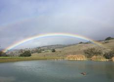 The rainbow ends at SheepDung!