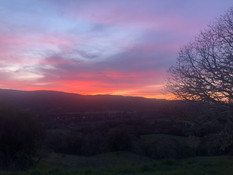 Spring Sunsets in Anderson Valley