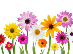 Ok. Mother Nature is taking the April showers will bring May flowers a little seriously...Here's