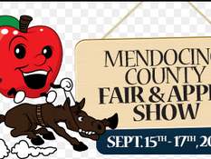 The Mendocino County Fair...It's A Big Deal Around Here!