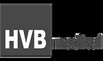 logo-hvb-rosu2_edited.png