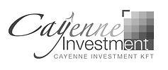 cayenne%20investment%20%202_edited.jpg