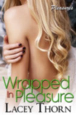 Wrapped in Pleasure - final1.jpg