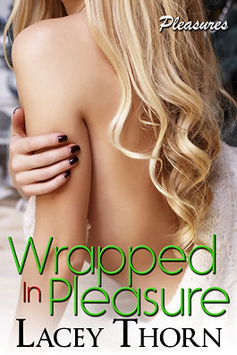 Wrapped in Pleasure - final1.jpg