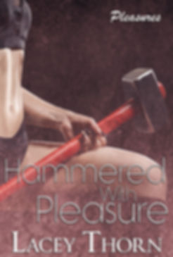 Hammered With Pleasure - final.jpg