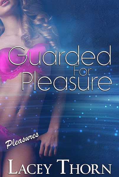 Guarded for Pleasure - 1light.jpg