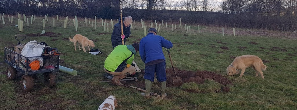 Margret and Vernon planting 2300 trees