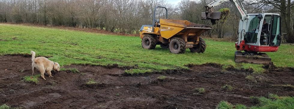 removing rye grass