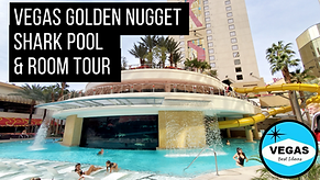 Golden Nugget Vegas Shark Pool and Hotel