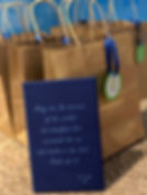 book image with bags.JPG