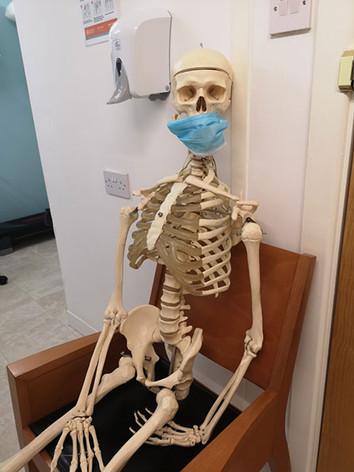 skeleton-anatomical-physio.jpg