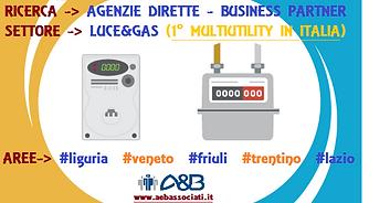 Agenzie dirette - business partner energia.png