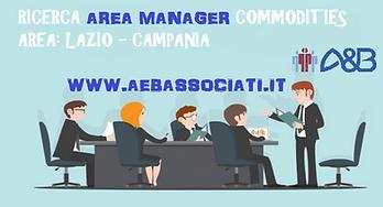 area manager energia e telecomunicazioni