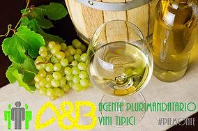 agente di commercio vini tipici.jpg