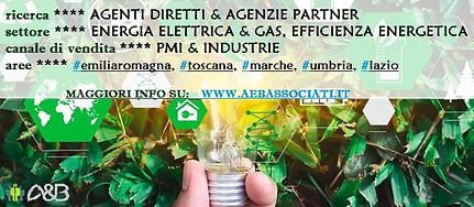 AGENTE DIRETTO SETTORE ENERGETICO.jpg