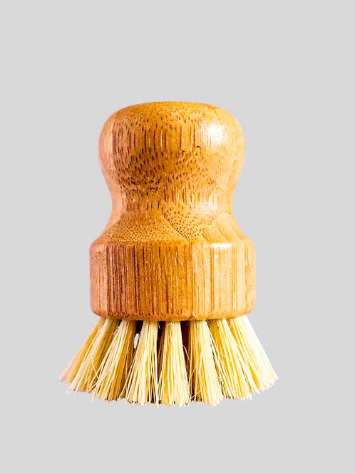 Casa Agave Pot Scruber