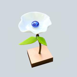 Flower _white_royal.jpg