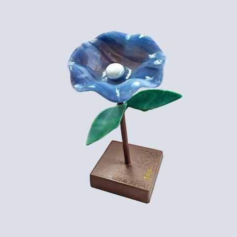 Flower%252520_Blue_edited_edited_edited.