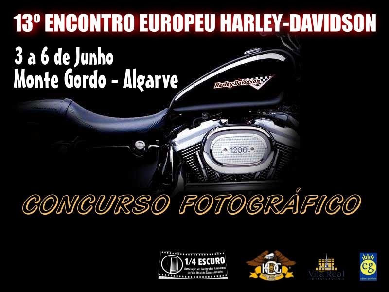 harley_2004