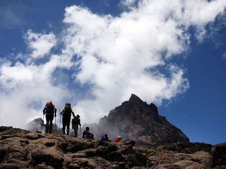 Day 3 - Kilimanjaro