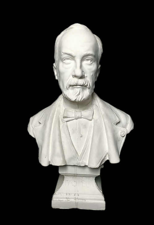 Pasteur   Piquemal