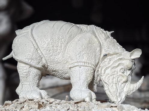 Rhinoceros   Thierry Loubry