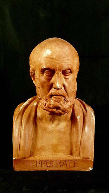 Hippocrate | Musée du Louvre