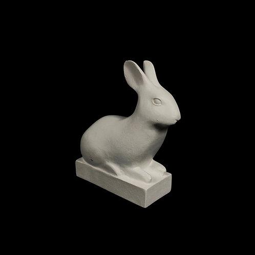 Rabbit | Pompom