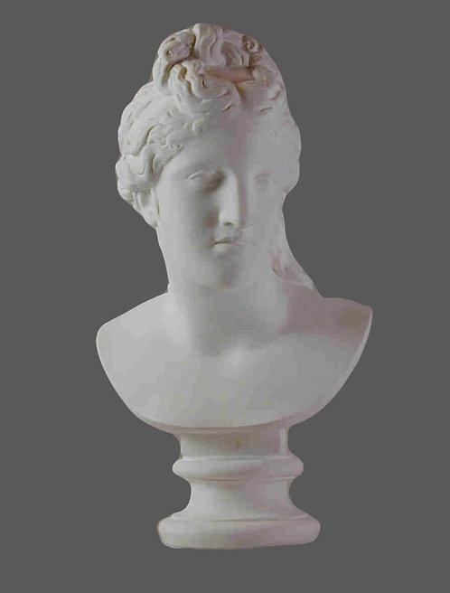 Vénus du Capitole | Musée du Capitole