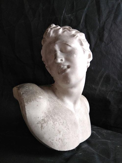 Laocoon Fils - Musée du Vatican