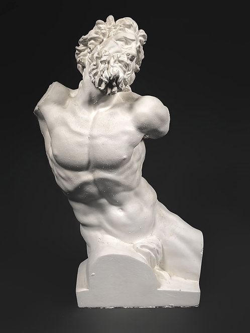 Laocoon Father | Vatican museum