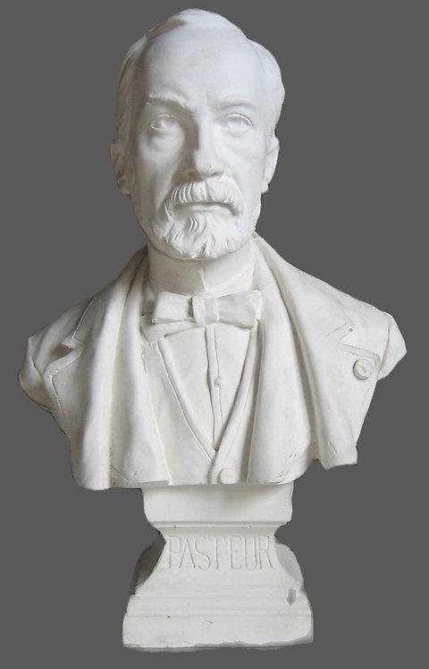 Pasteur | Piquemal