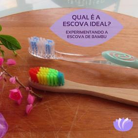 Qual é a Escova Dental Ideal?