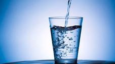 Importancia del agua en la alimentación