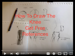 Knee Drawing Exercise. Patella Drawing