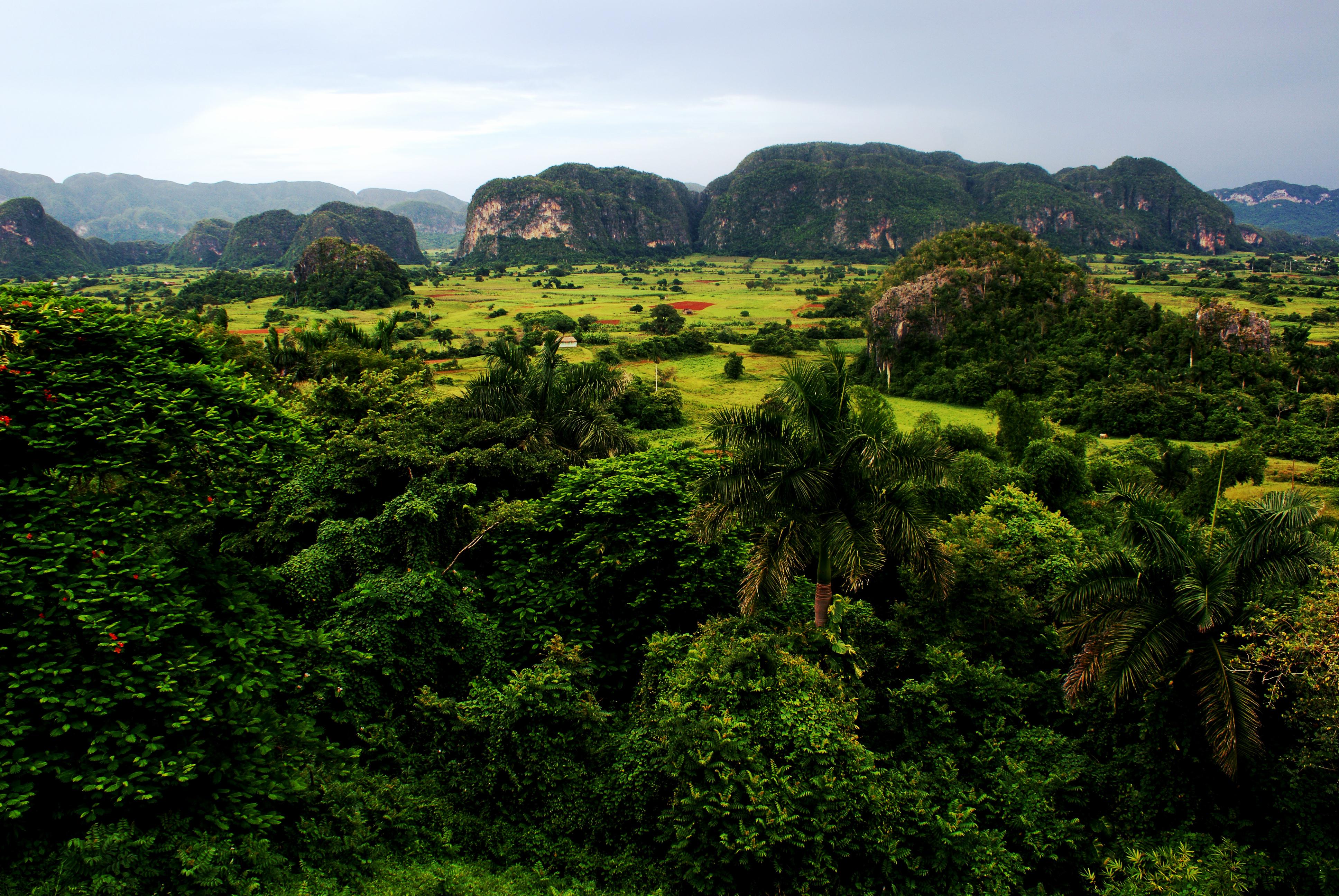 Dolina Vinialez, Kuba
