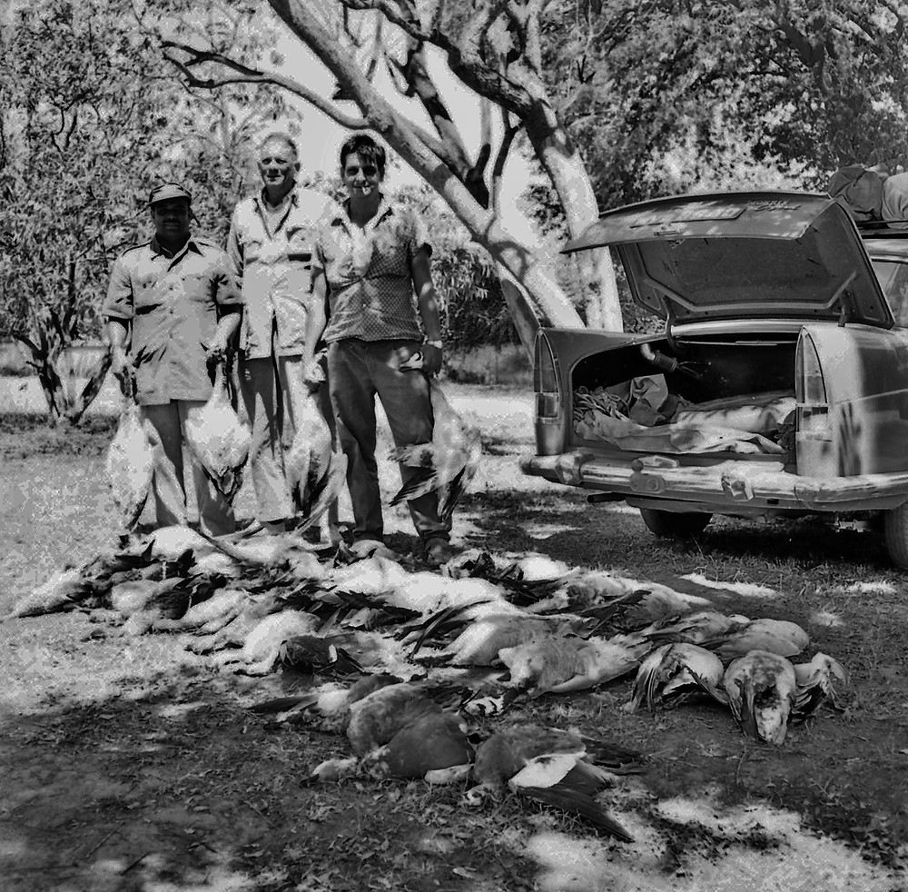 Baba Cariappa, Tiny Seddon and Don Anderson after a duck hunt