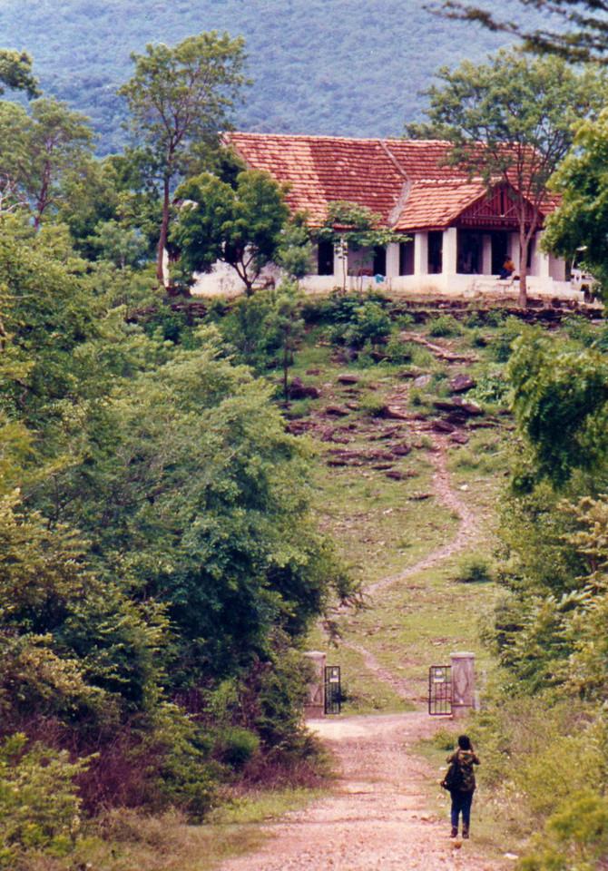 The last of a vanishing species - Rags Raghavan