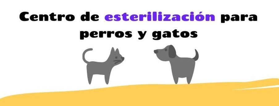 Centro de esterilización para Perros y Gatos PAC-Pet Lomas de Atizapán