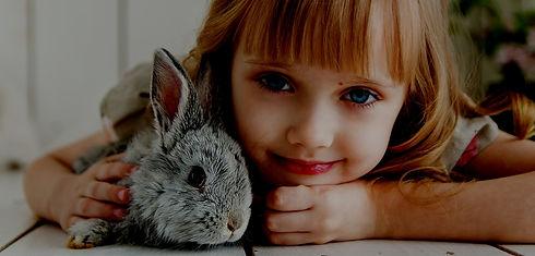 rabbit-3660673_1920 - copia.jpg