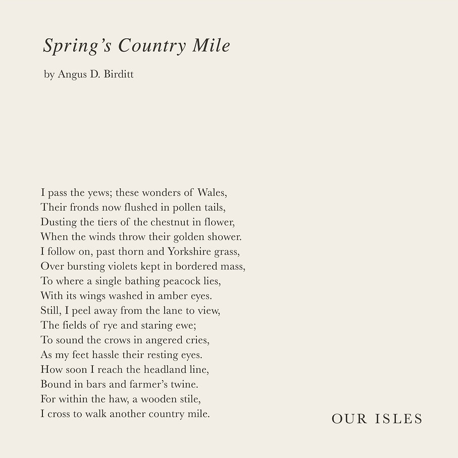 Spring's Country Mile.jpg