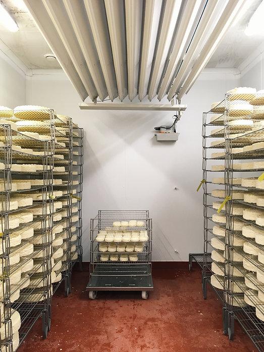 Fen Farm Dairy, Jan 2018 (1).jpg